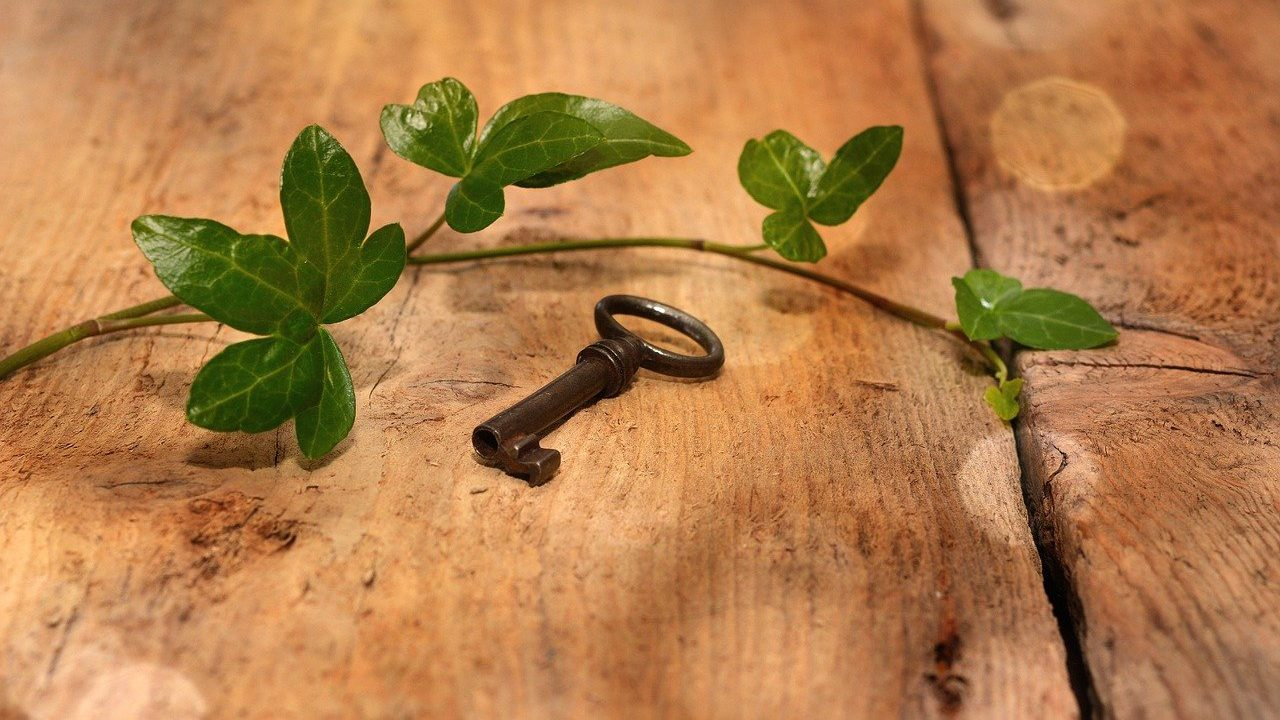 sleutel oude ivy houten vloer